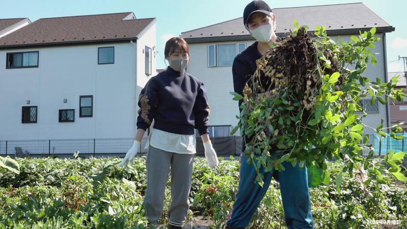有村架純と志尊淳が農作業を体験 児童相談所やホストクラブ経営者に取材 「人と仕事」場面写真